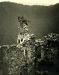 castel_altaguardia_blick_vom_bergfried_in_hof_1938